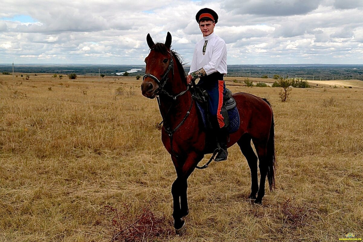 Картинки казаки с конем