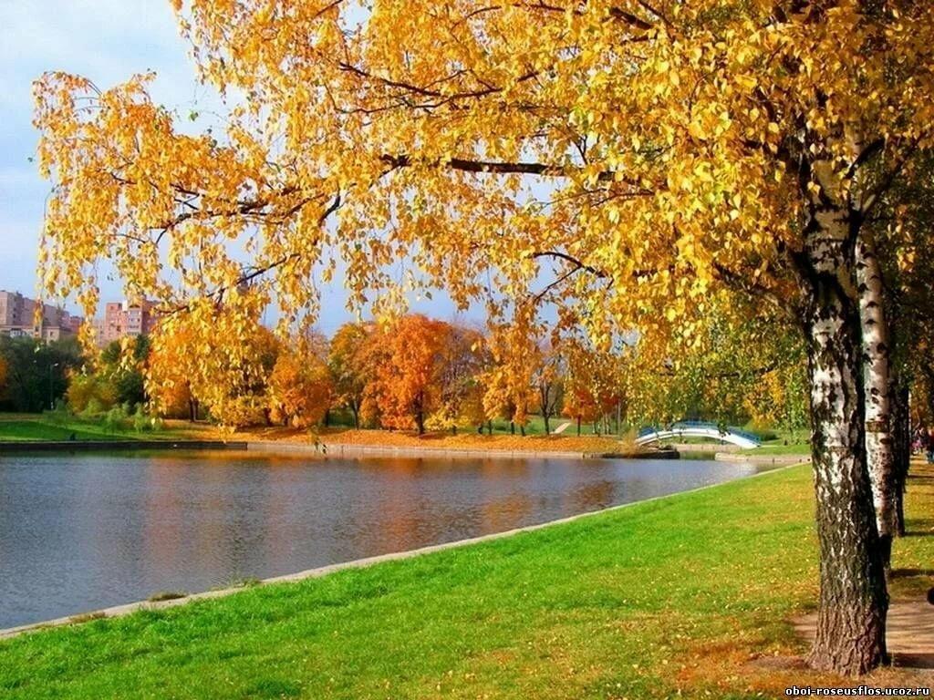 Открытки ранняя осень, кремлем москвы
