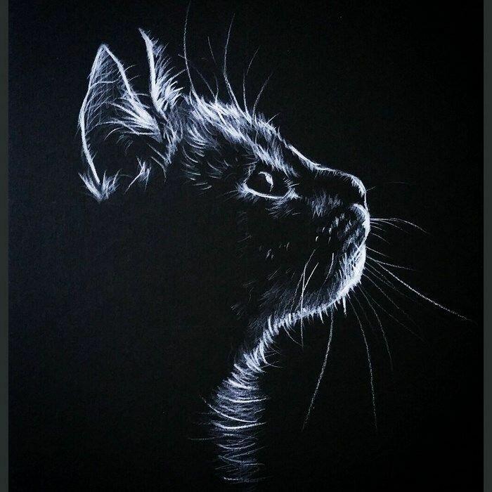 особый коты в черно белом цвете картины культурного ценного ли