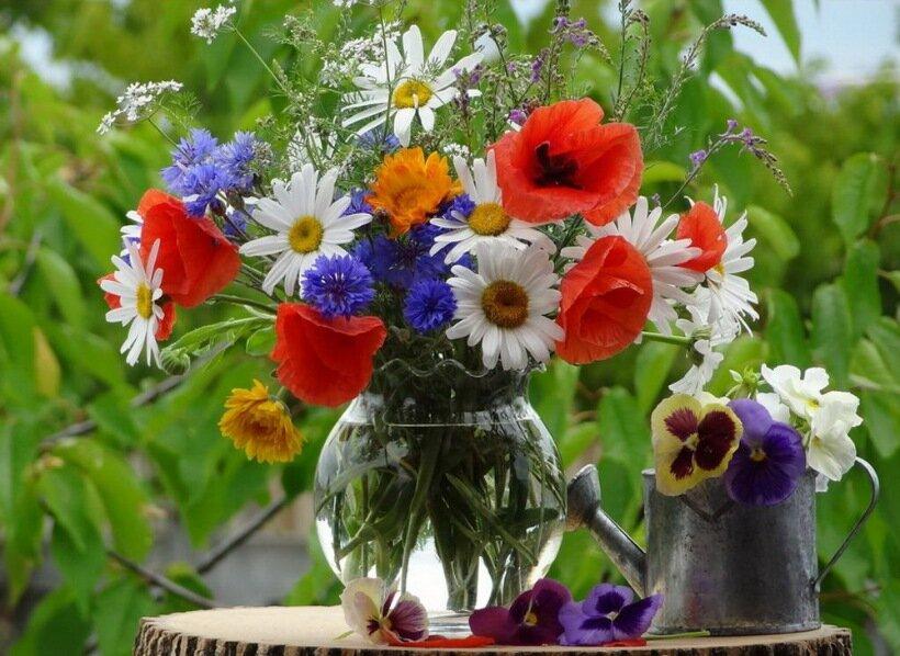 букет полевых цветов картинки гифки как