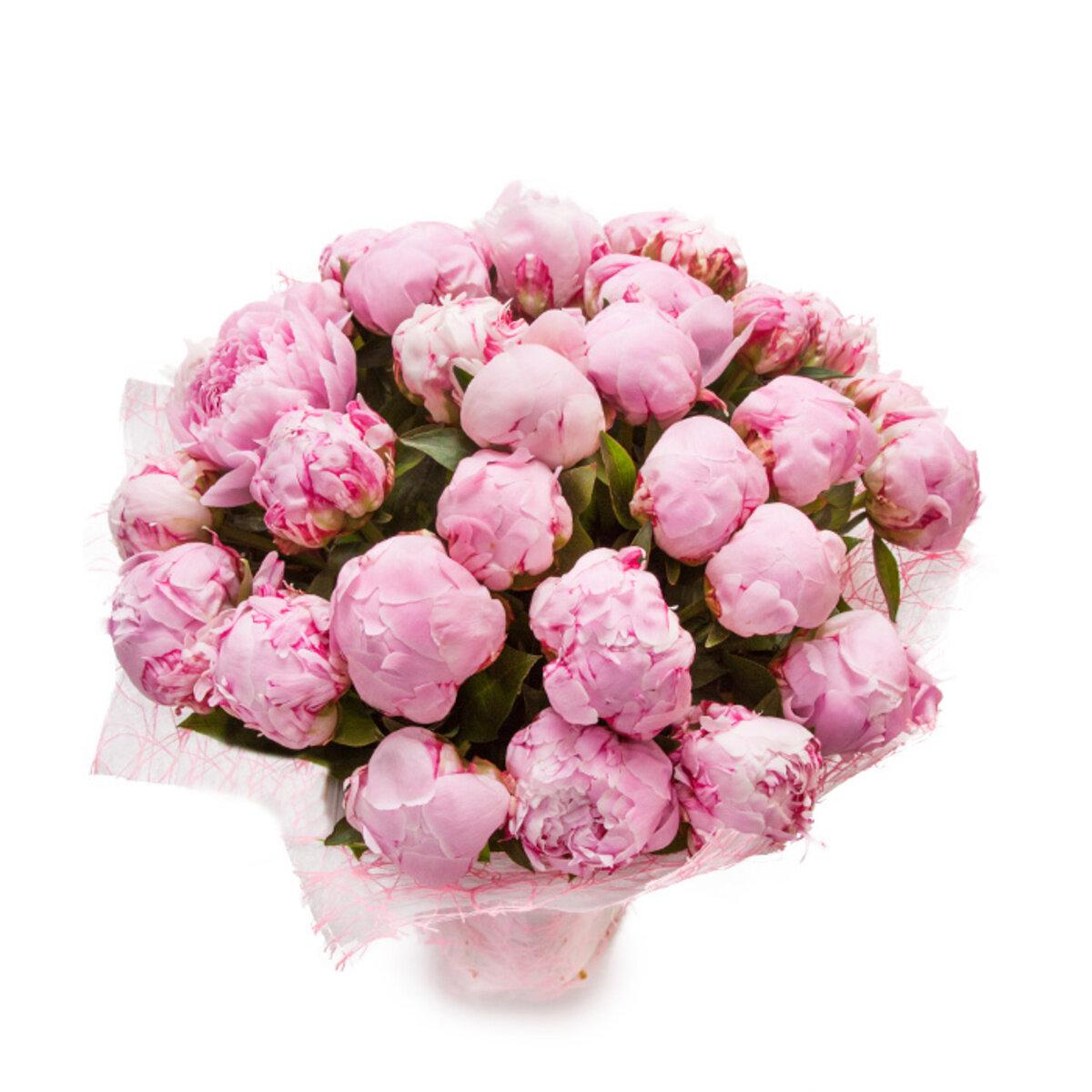 Цветы пионы интернет магазин