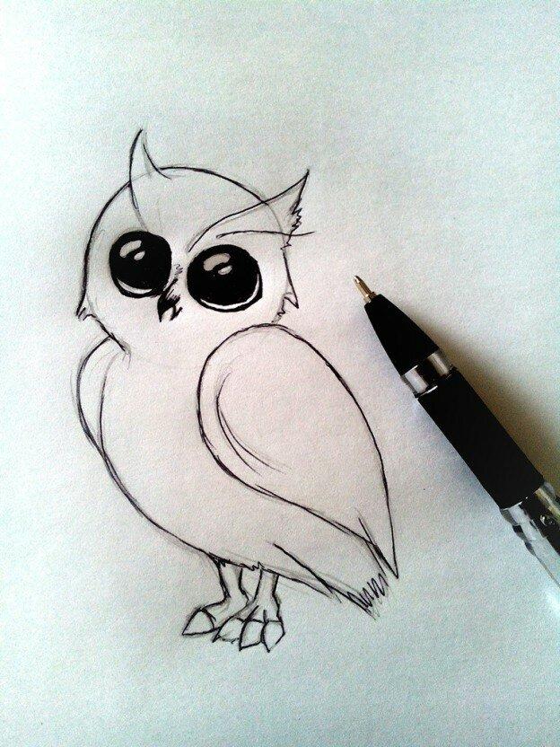Картинки для срисовки красивые совы