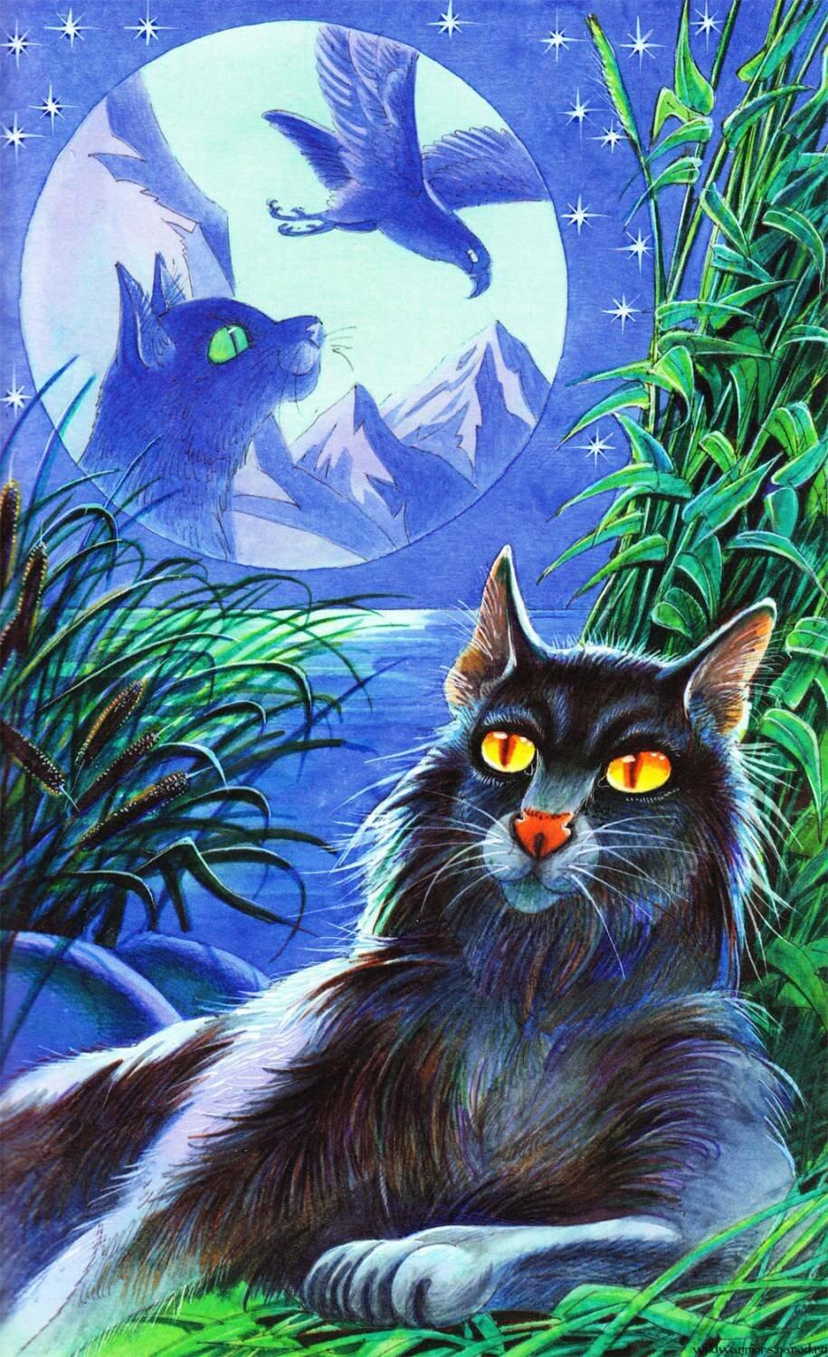 Коты воители речное племя картинки именами котов