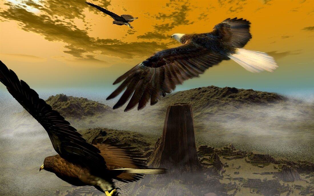 ритм картинка два орла в небе любого
