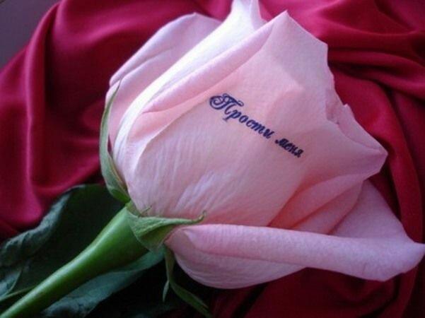 Картинки цветы для девушки с надписями, телефон анимации для