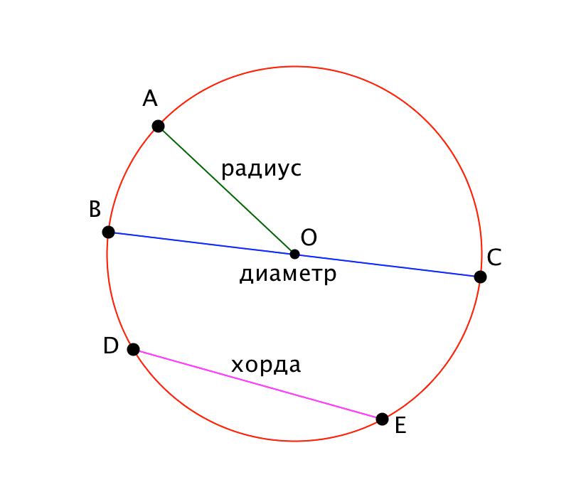 Картинки окружности с диаметрами