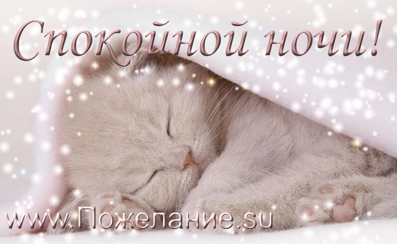 Споки ночи открытки
