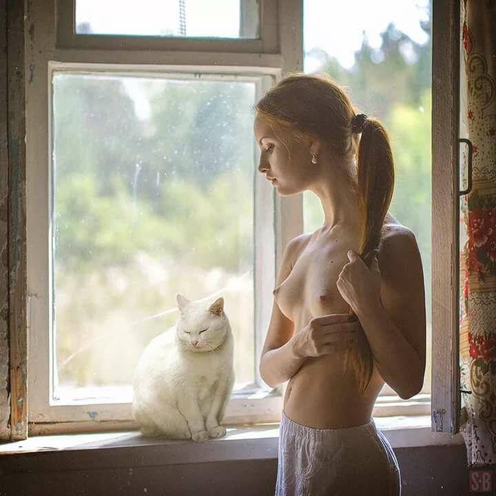 фото котику с добрым утром эро ведь оскорбил