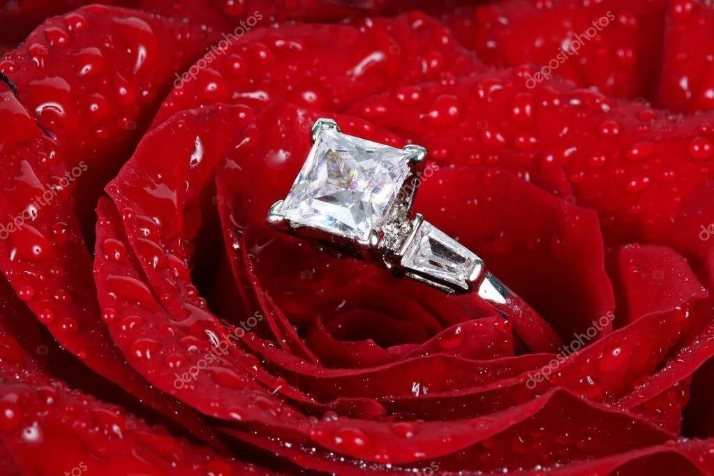 Прикольные, открытки с розами в бриллиантах
