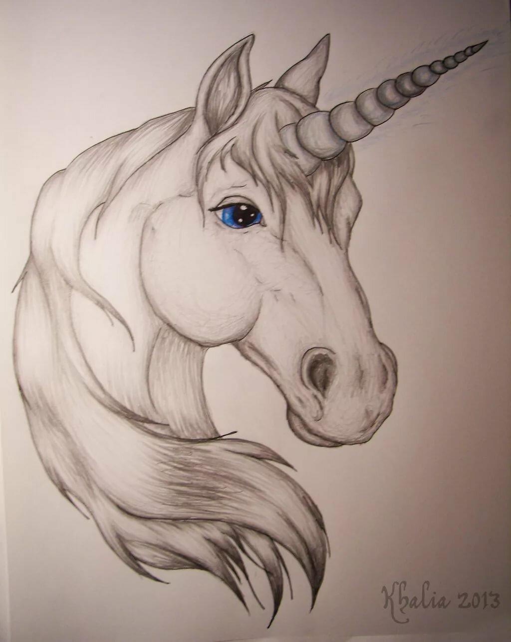 Открытка для, крутые картинки лошадей для срисовки