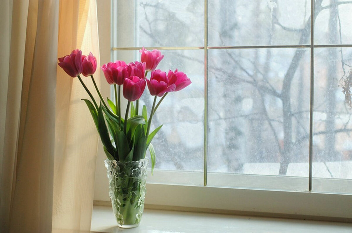 Открытки стол с вазой и цветами у окна