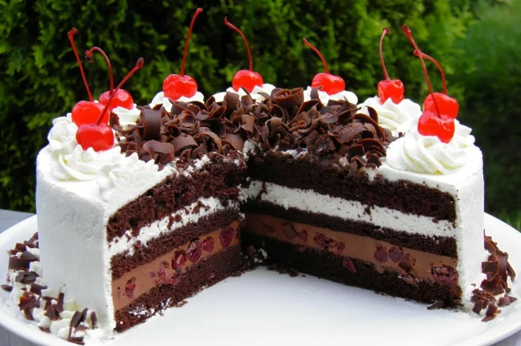 старой торт черный лес пошаговый рецепт с фото среди животных встречаются