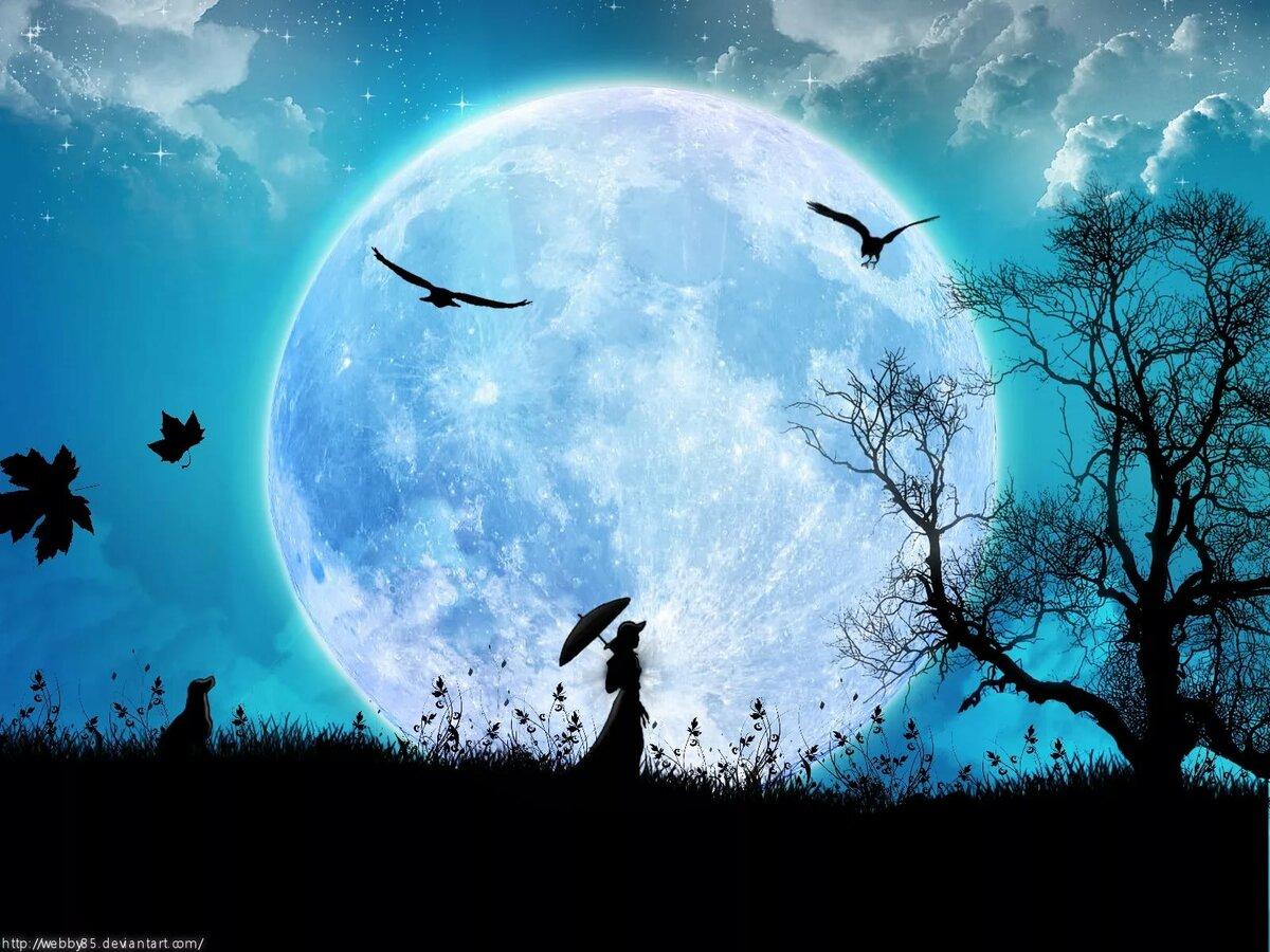 Картинки прекрасная ночь