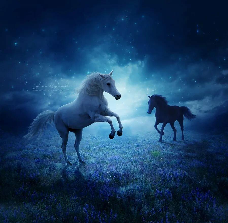 Картинка белой и синей лошади