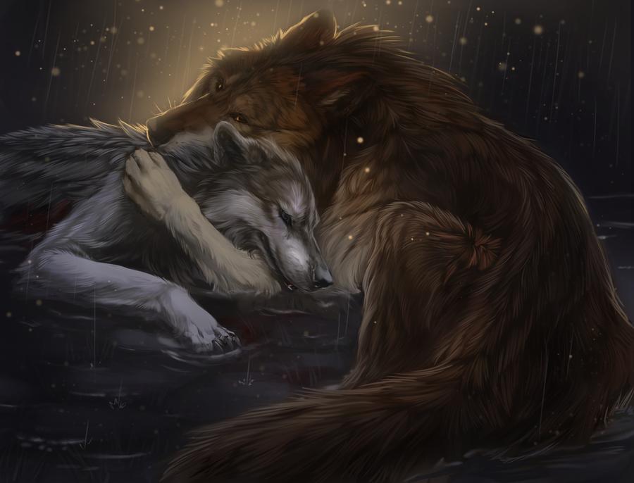 Картинки с ранеными волками