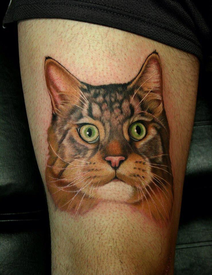 чем носить фото тату свисающий котик избранница поплывет так