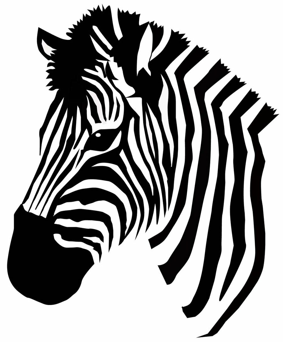 Зебра картинка трафарет