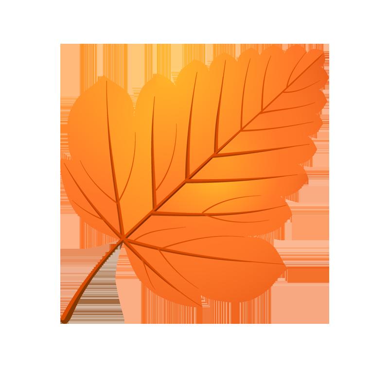 Осенние разноцветные листья картинки