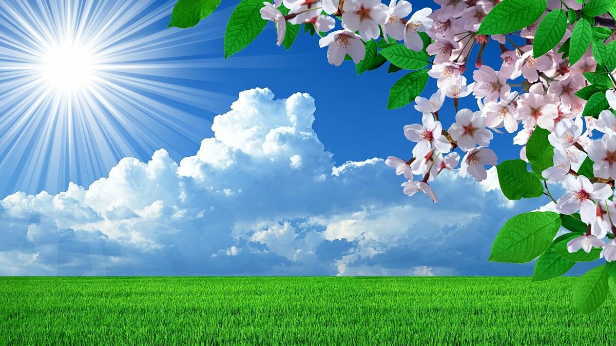 Открытки природы весны, днем учителя