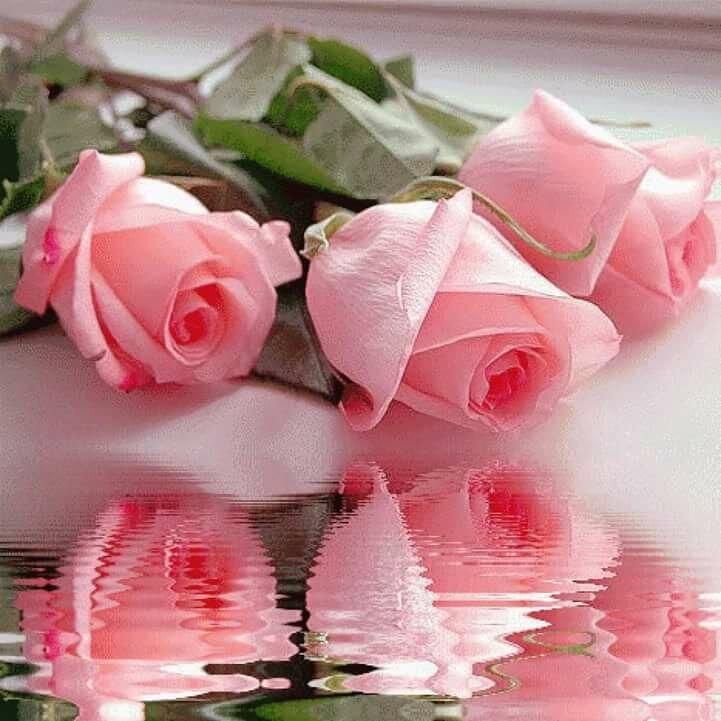 Днем рожденья, анимационные открытки красивые розы