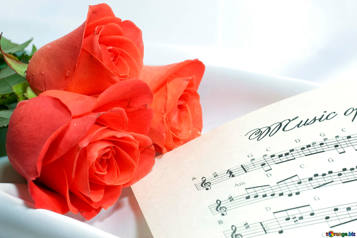 Поздравление к дню музыки в прозе