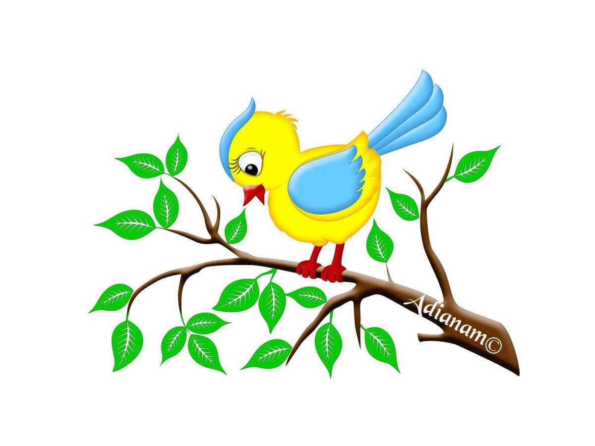 Юбилеем без, картинки для детей птичка сидит на ветке