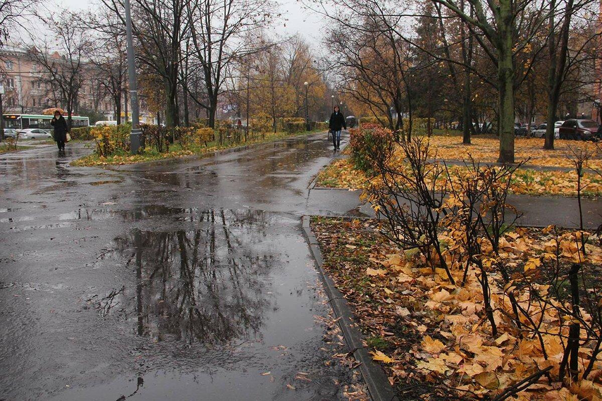 поздняя осень в городе картинки картинки