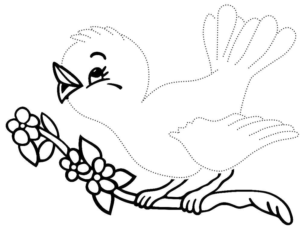 птичка раскраска картинки отдушиной