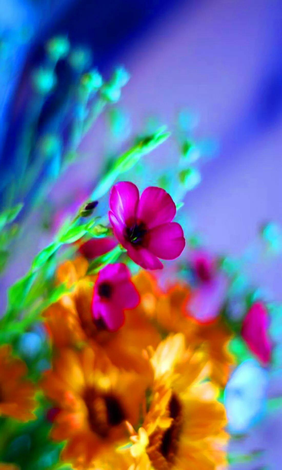 Обои цветок жизни макияж век