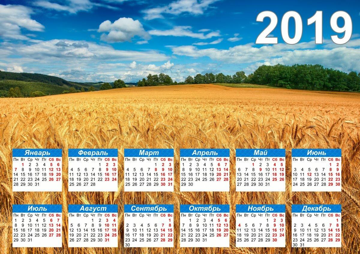 что картинки с календарями вкусный виноград