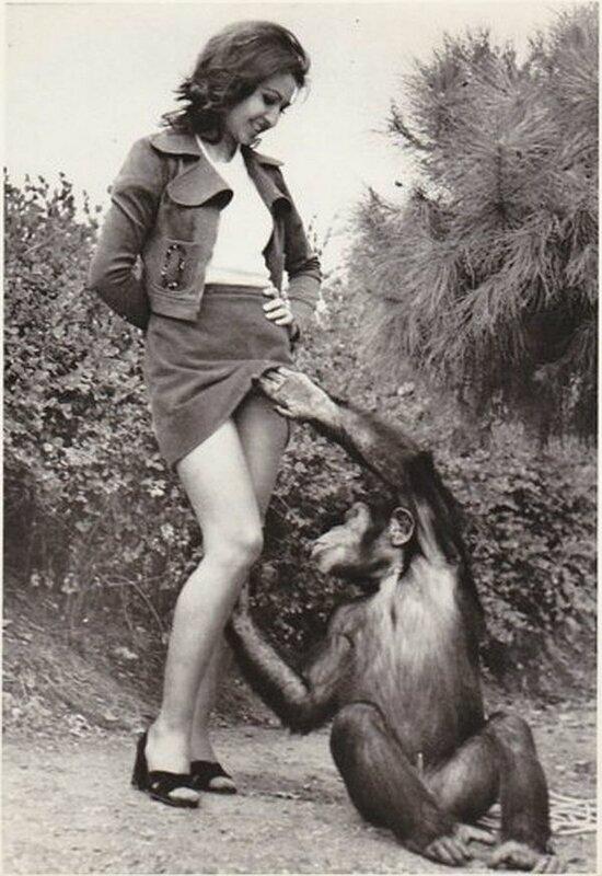 Картинки ретро женщина с гориллой