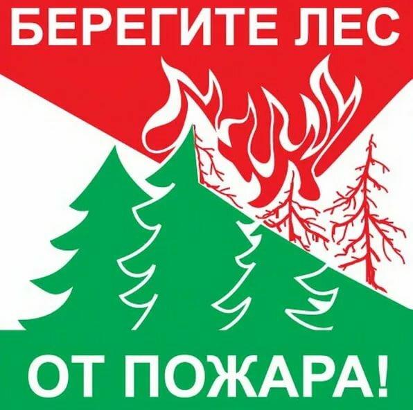 круассаны береги лес постеры там еще