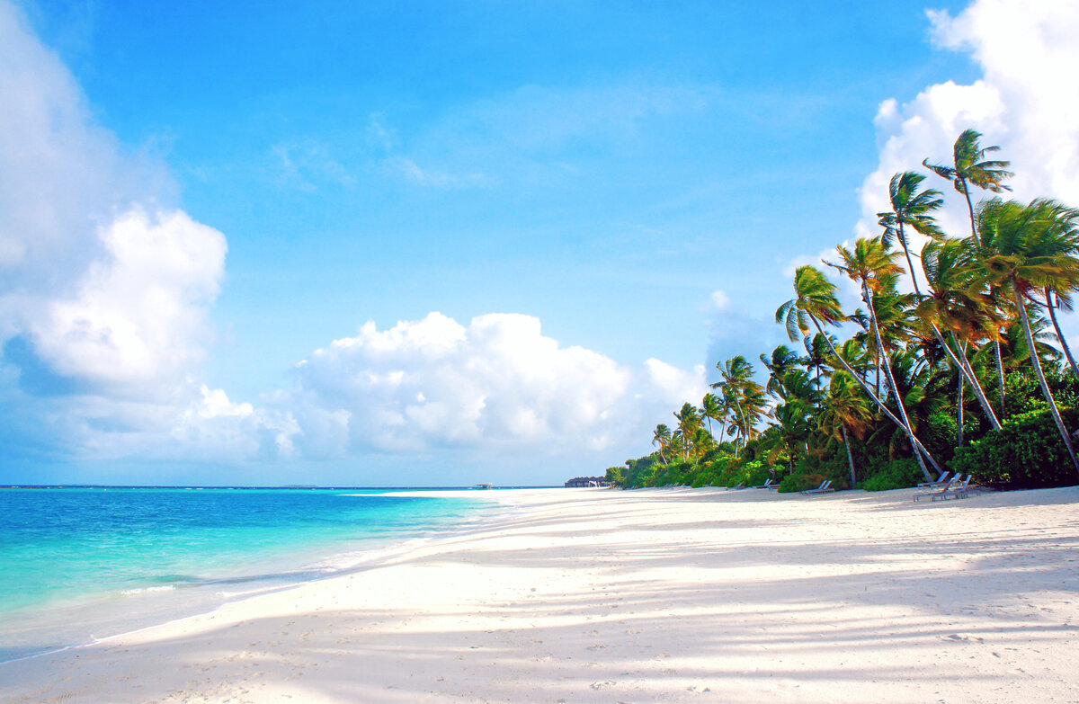 Пляж картинки