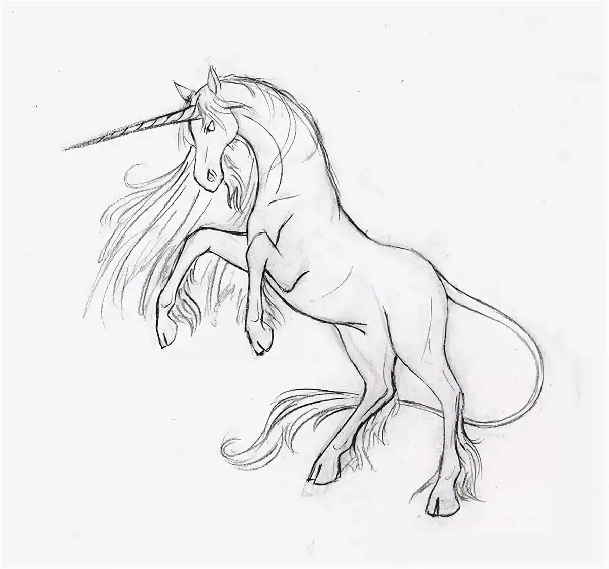 него попали красивые рисунки единорогов карандашом легко четырёх лет