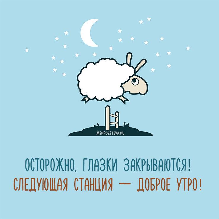 Спокойной ночи всем картинки прикольные