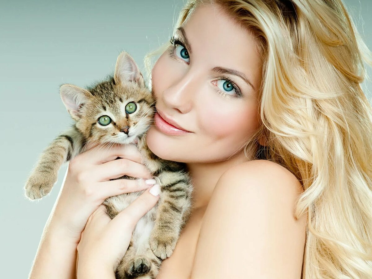 Очень красивые картинки с кошками на руках девочек