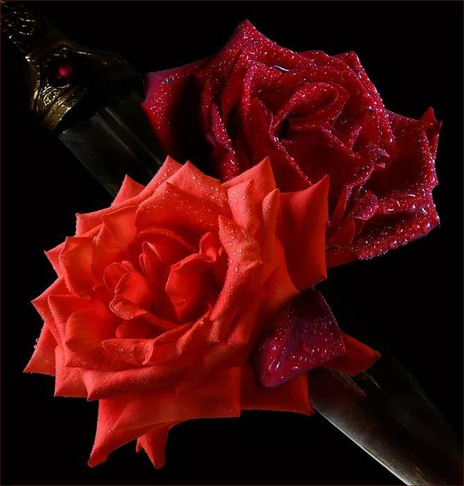 анимация фото цветок любви хорошо