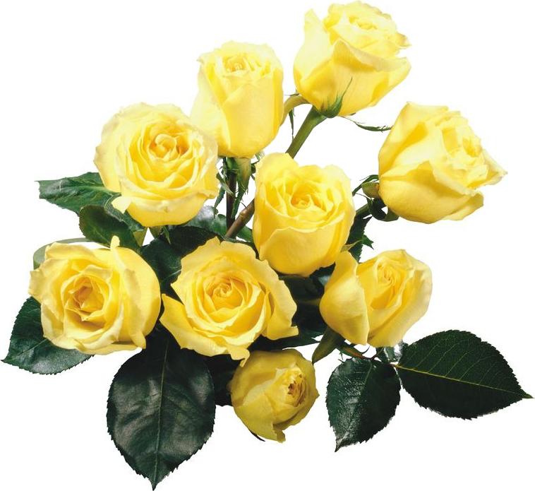 Открытки букетов желтых роз