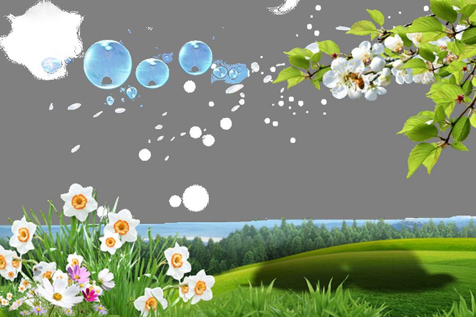 Фоторамка весна в парке