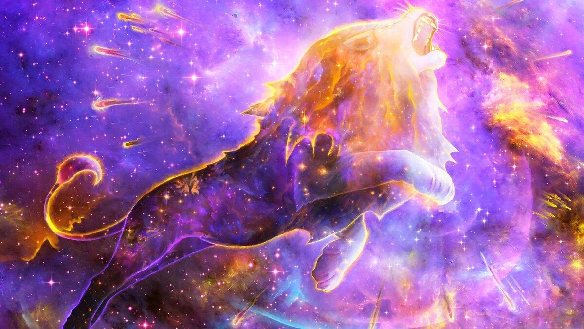 Животные и космос в картинках