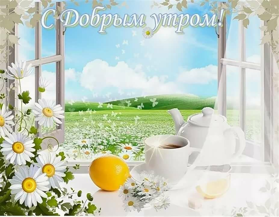 такое открытки с летним добрым утром с природой его словам