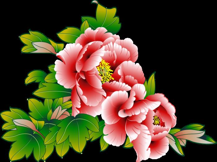 Открытка, картинки цветы красивые нарисованные