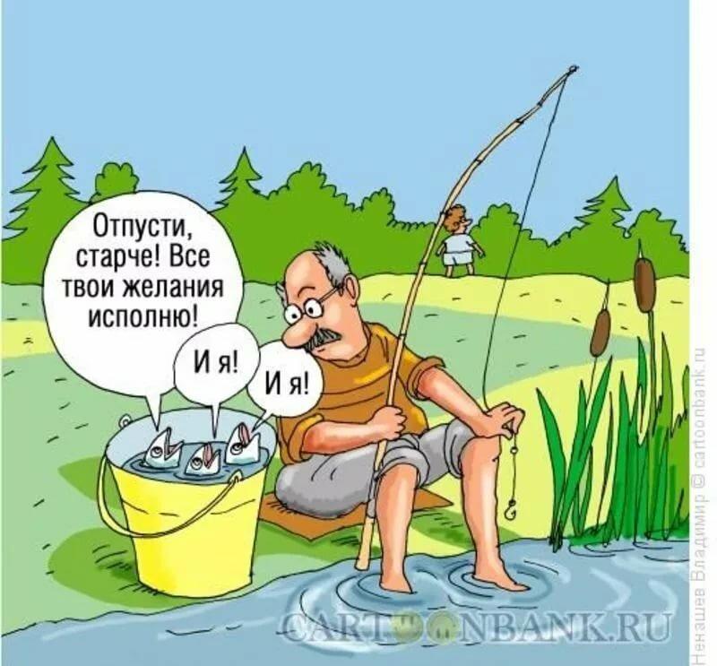 Поздравлением днем, смешные картинки про рыбалку с надписями до слез