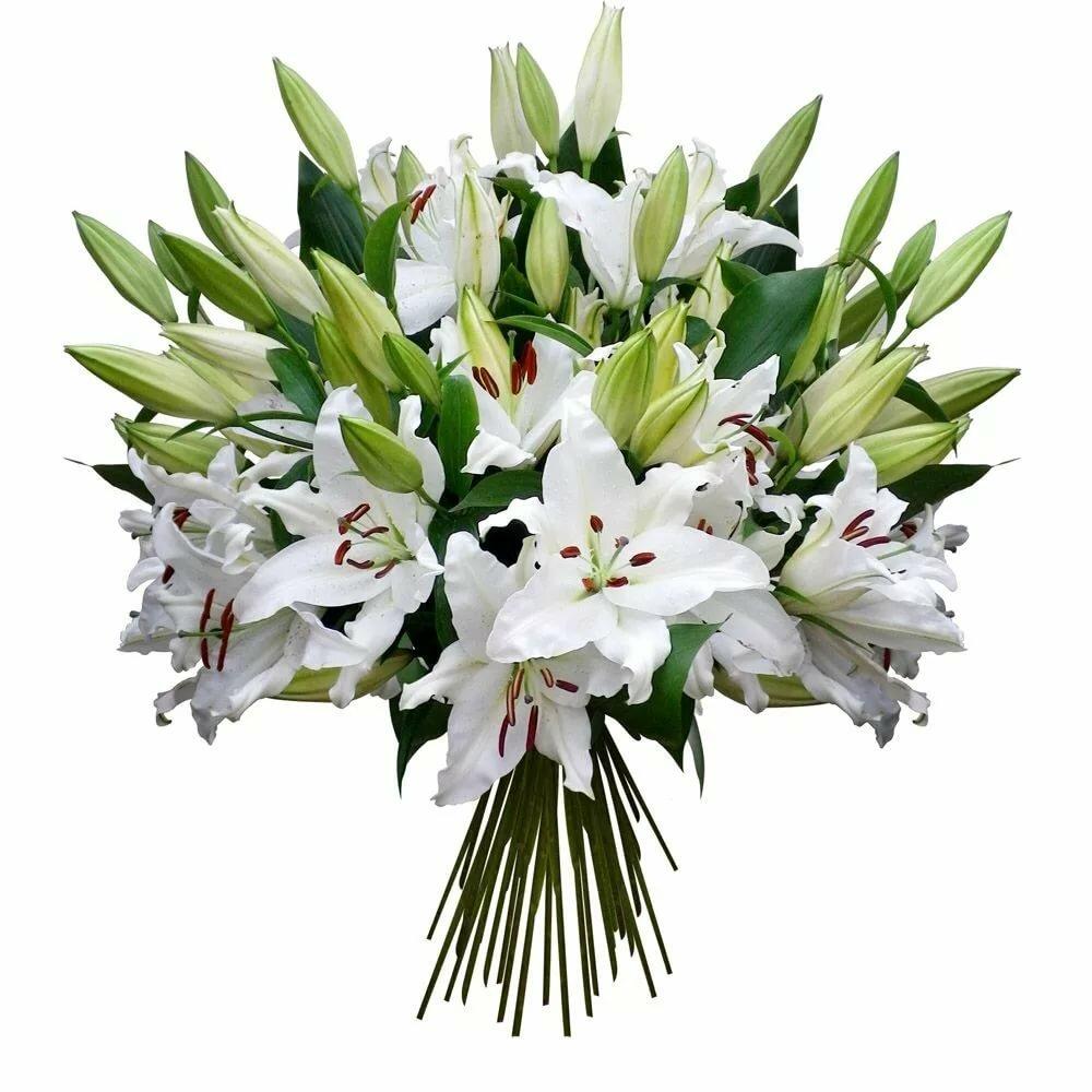 Свадебных букетов, лилии заказать букет в москве недорого