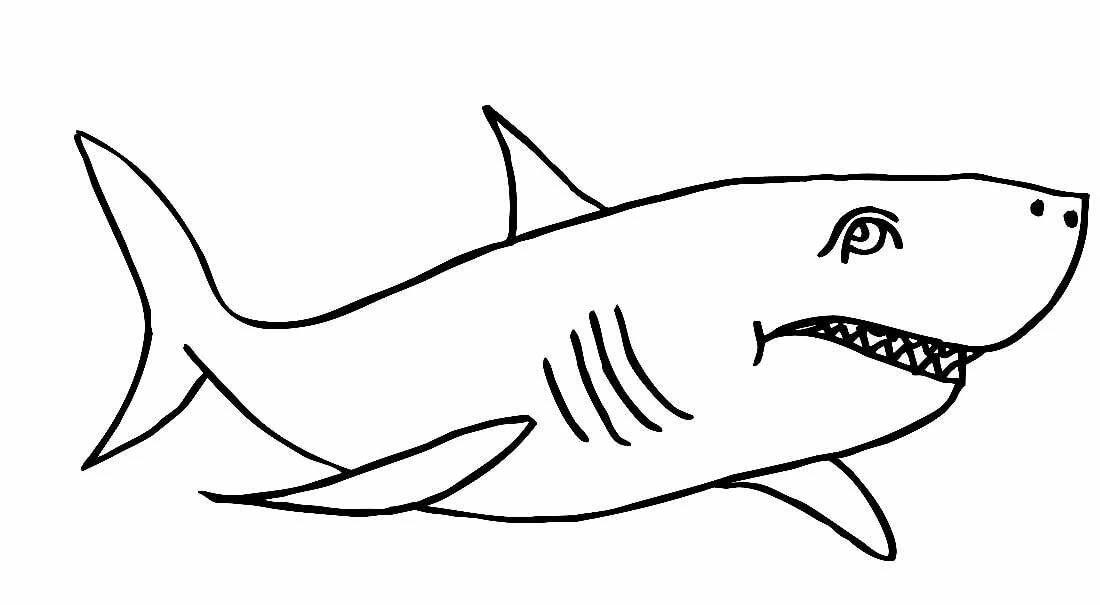 акула толстого раскраска часть экскурсии