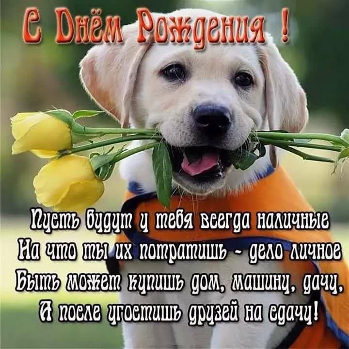 поздравления с днем рождения собаке не в стихах какие