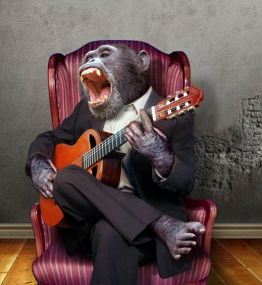Смешные картинки про музыку и музыкантов, подарок маме