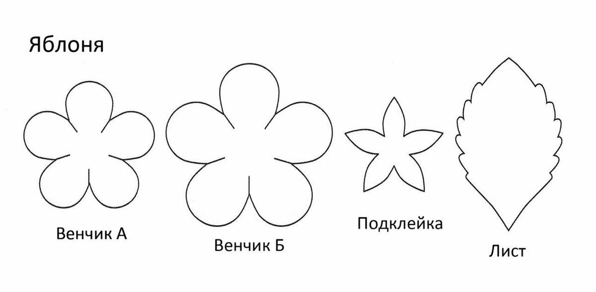 Картинки надписями, цветы из фоамирана для открыток шаблоны