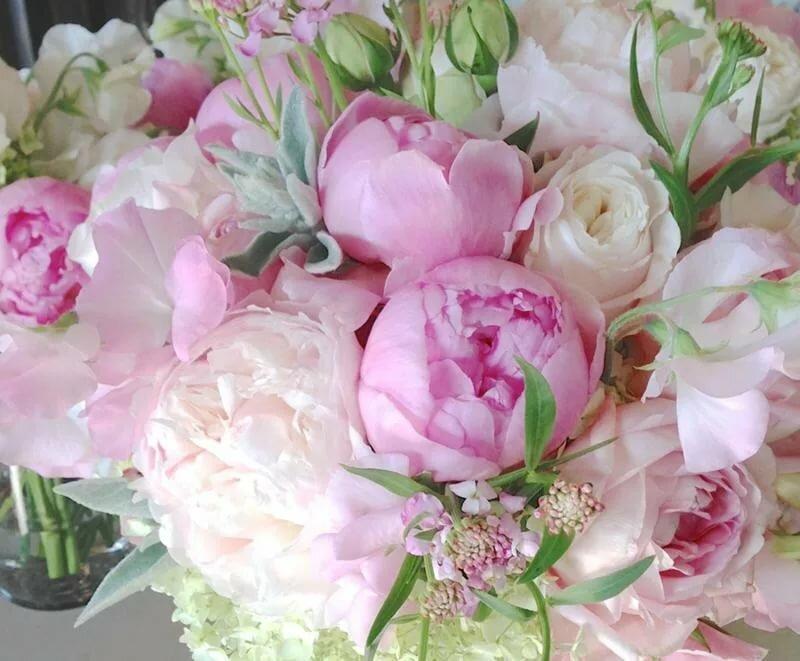 Открытки пионы с днем рождения женщине красивые