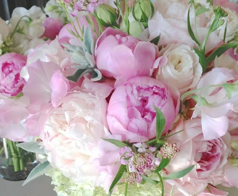 Открытка с розовыми пионами, самой